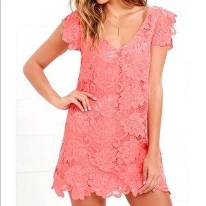 BB Dakota Lace coral shift dress